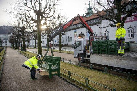 Her blir den første benken plassert ved Lille Lungegårdsvannet.