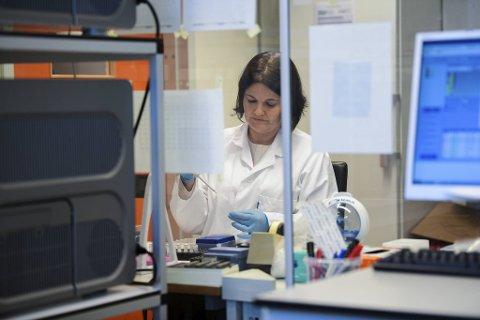 Randi Monsen Nygaard og kollegene ved laboratoriet på Haukeland sykehus har travle dager.
