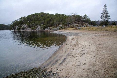 Stranden i Kollevågen har sett ganske mye bedre dager (bla for flere bilder av hvordan stranden ser ut nå).