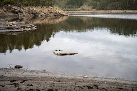 Kraftlaget senket vannstanden i denne Åsane-dammen med nesten syv meter på grunn av vedlikehold. Plutselig kom taket på denne gamle bilen til syne.
