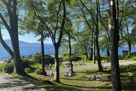 Det er høye temperaturer og lave smittetall i Bergen for tiden. Det blir det god stemning av, som her i Nordnesparken tidligere i uken.