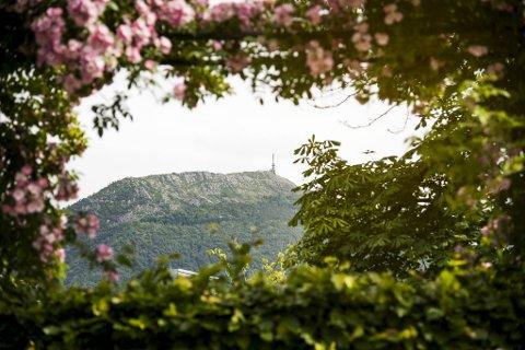 Sommerdag i Bergen, med utsikt mot Ulriken. Arkivfoto.