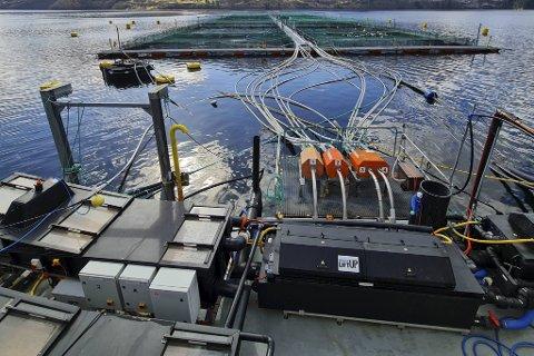 Bunnslam fra disse fiskemerdene til Lerøy Sjøtroll i Sørfjorden blir pumpet gjennom et automatisert system som samler opp slam i separate avsug parallelt med dødfisk. Slammet blir så ført til flåten for filtrering. Det konsentrerte avfallet blir lagret på tanker.