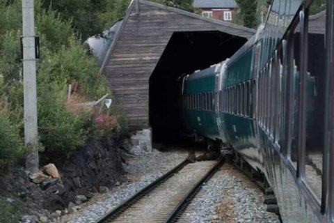 Kyrne skal ha vandret inn i tunnelen, hvor det ifølge pressekontakt i Lundeby ikke var mulig for toget å unngå sammenstøt.