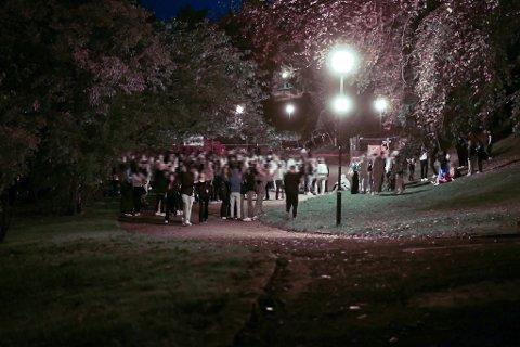 Et par hundre mindreårige er samlet i Nygårdsparken fredag kveld. Politiet advarer mot utagerende festing blant stadig yngre ungdommer.