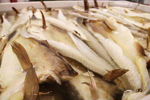 Lutefisk fra Lofoten