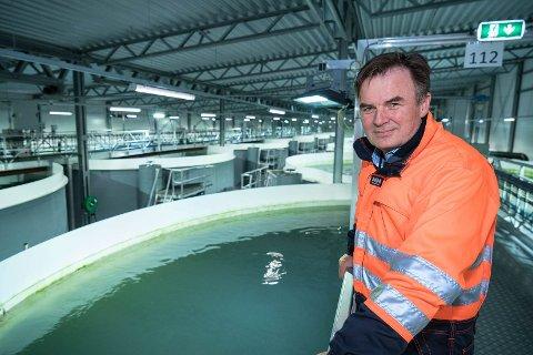 Oppdrettsaktivitet: Geir Magne Knudsen er fagsjef for strategi og utvikling i Bremnes Seashore AS. Her er han på selskapets postsmoltanlegg på Trovåg i Vindafjord kommune.