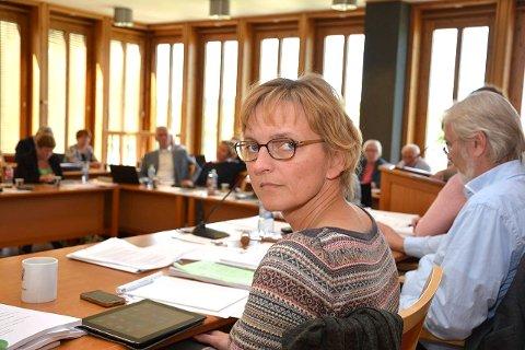 Rådmann Aud Norunn Strand, Modum kommune