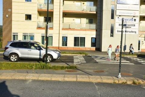 ÉN TIL: Det er tre fartshumper omkring Engerkrysset allerede. Kommunen vil ha én til.