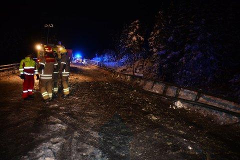 TO DREPT: En mann og en kvinne mistet livet i ulykken på E134. De etterlater seg en liten datter.