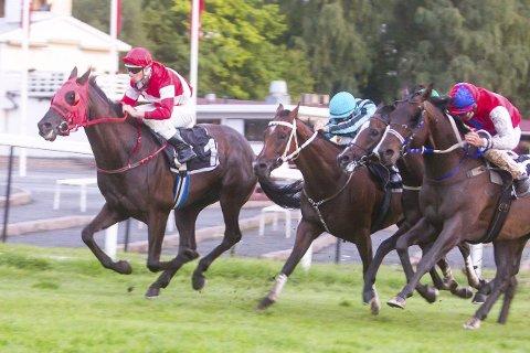 SEIERSVANT: Vortex (nr. 1) har bokført 19 seire i karrieren. I vinter skal Hokksund-hesten konkurrere i Dubai. Her er hesten i aksjon på Øvrevoll.Begge foto: hesteguiden.com