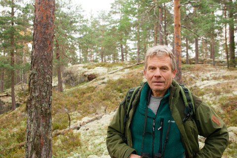 HOLLEIA: Arne Nævra er bekymret for storhogsten i Holleia og synes det er synd at dette sammenhengende skogsområdet blir brutt opp av hogst.