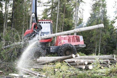 Hogst: Innsenderen er sterkt kritisk til moderne skogsdrift og forsvarer at de dokumenterer hogstmaskinenes ferd med blant annet å ta bilder. Illustrasjonsfoto