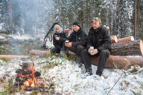 KJENNER SEG IKKE IGJEN: Eva Christine Skagestad, Hans Boye Bergan og Halvar Pålrud er ikke enig i Naturvernforbundets og WWFs beskrivelse av at norsk skogbruk skader plante- og dyrelivet.