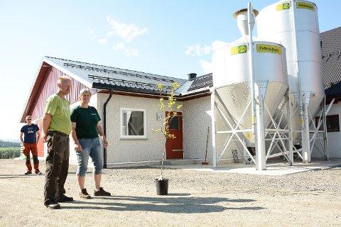 Jan og Kari Johanne Foss, fjøs, Foss gård, Sigdal, melkebønder