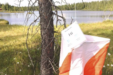POSTJAKT: Modum O-lag regner med om lag 700 deltakere da veteranmesterskapet og Modum todagers arrangeres på Norefjell og Kløftefoss om en snau måned.Arkivfoto