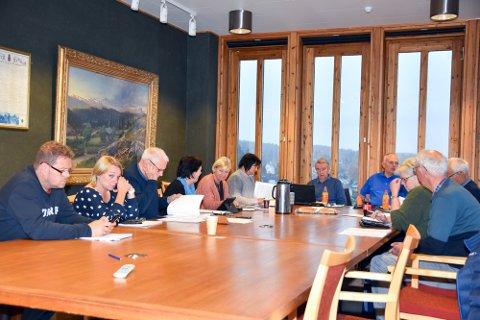 LITE SOMMEL: Teknisk hovedutvalg i Modum kommune gjorde unna behandlingen av søknaden lynkjapt.