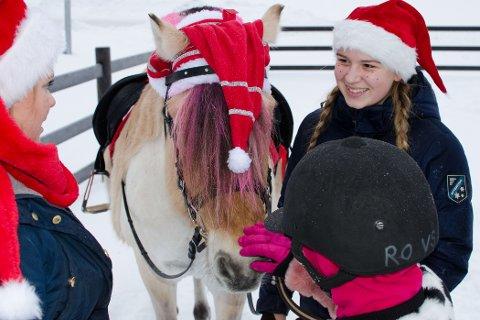JULEMARKED: Ester Solhaug Fagerberg har pyntet hesten med både nisselue og rosa hår for anledningen,