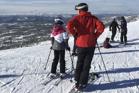 Norefjell, Norefjellheisen, Bøeseterheisen, Norefjell alpinsenter, Skistua