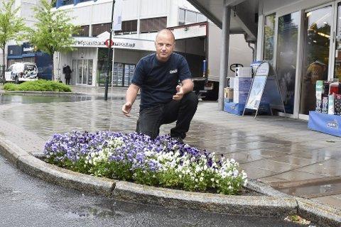 FINT: Brede Skinstad oppfordrer til et felles lite tak for å luke unna ugresset i Vikersund. I bedet han har utenfor Euronics har noen faktisk stjålet et par planter.
