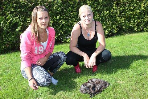VIL HA ET SVAR: Guro Mohagen f.v. og Jeanette Andresen, med katten Baghera, ønsker å få et svar og sette en stopper for forgiftningene.