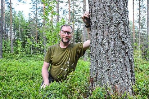 Skogbrukssjef Ingar Aasestad, Sigdal kommune