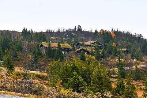 BYGGEGRENSE: Kommunestyret i Sigdal sier neste torsdag nei til nye hytteområder over skoggrensa i Eggedalsfjellet.
