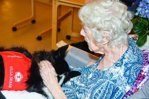 TERAPI: Anne-Grethe Gylthe sammen med terapihunden Othello.