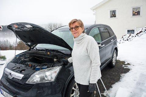 BILENE DUNDRET FORBI: Bare Tor-Kjetil Soleheim og en ambulanse stoppet for å tilby Aud Holck hjelp da hun fikk motorstopp på rv 35 torsdag. – De andre senket ikke engang farten, sier hun.