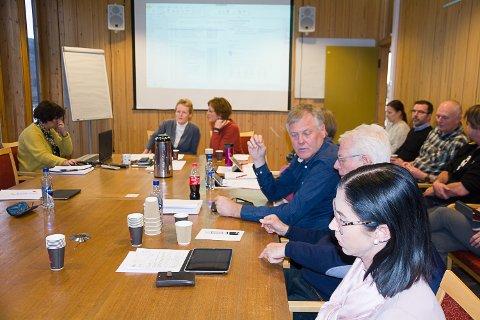 SA JA: Formannskapet i Modum kommune vedtok å bevilge 100.000 kroner til reisemålstrategi.