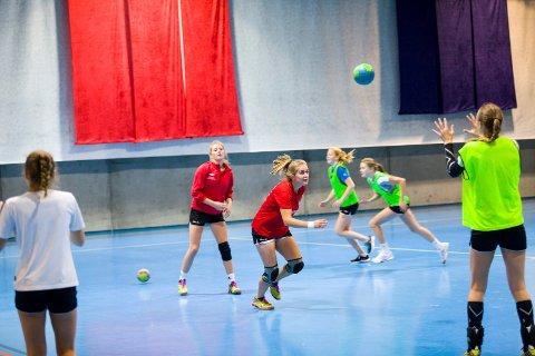 TRENGER MER PLASS: Både håndball- og volleyballmiljøet har engasjert seg i planene om ny flerbrukshall i tilknytning til Vikersund skole. I blant annet Flying Team-hallen (bildet) er det kamp om treningstidene, så de mener behovet er stort for en flerbrukshall med god størrelse.