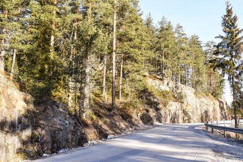 Det er på åskollen til venstre og innover i terrenget at klatreparken er planlagt. Veien på bildet er Overnveien.