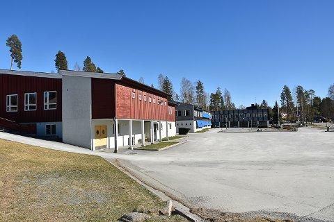 SØKTE ETTER LÆRER: Det kom inn 13 søknader på stillingen som lærer ved Krøderen skole.