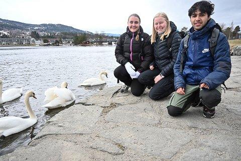 WALKABOUT: Elise Auestad, Ida Carlsen, Tor Fernando Tjeltveit fra Sagavoll folkehøgskole i Gvarv har vært på walkabout i Modum og levd gratis her hele uka.