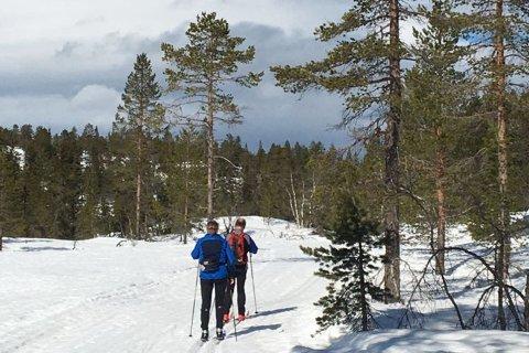 NYSNØ: Påfyll av mer snø gjør at skisesongen på Holtefjell forlenges.