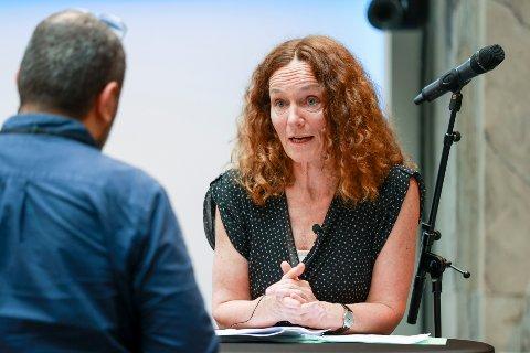 FHI-direktør Camilla Stoltenberg mener Drammen er i en god posisjon, men viser også til punkter som bekymrer.