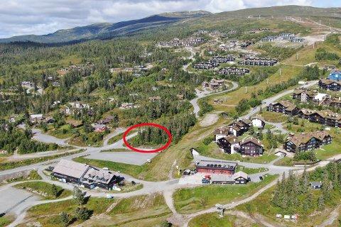 AFTERSKI: Det er I dette området Fjøla Norefjell AS planlegger sitt nye afterskisted. For å kunne starte byggingen må selskapet først få dispensasjon fra dagens reguleringsplan..