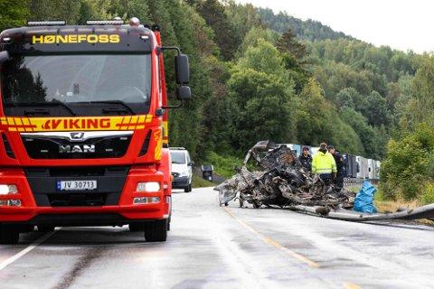 TRE BRØDRE: Tre brødre på 17, 18 og 20 år omkom i ulykken ved Gulsvik i Hallingdal.