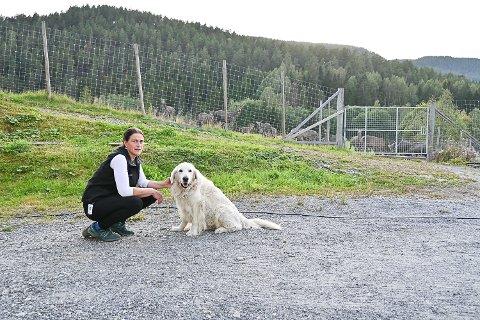 OPPLEVDE BESØKET SOM TRUENDE: Marianne Kopland var skjelven etter et ubehagelig besøk av en ambassadebil på gården. Gjesten lot seg imidlertid skremme av hunden Egon.