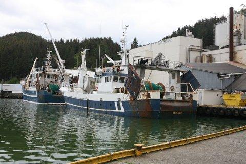 De siste dagene har det vært travel virksomhet ved Egersund Sildoljefabrikk. Tobisfisket foregår sør i Nordsjøen og fangstene har vært svært gode.