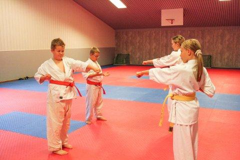 BETRE SJØLVTILLIT: Adrian Flåten fekk tilbake trua på seg sjølv då han begynte på karaten. Då gjekk det betre på skulen òg. Her blir han instruert av Enora Peersen. Emily Svanes instruerer Leon.