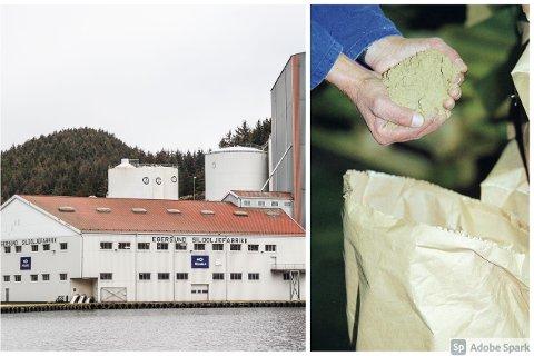 SKAL GRANSKE: Eierne av Pelagia-konsernet vil ha en uavhengig granskning av påstandende om ukultur ved Pelagia Egersund Sildoljefabrikk.