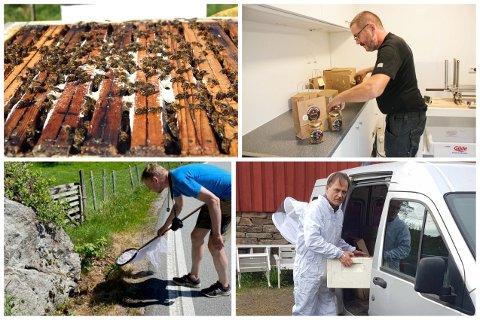 REAGERER PÅ PRAKSIS: Birøktarane Tore Svanes (øvst) og Oddvar Mydland reagerer på at det blir brukt plantevernmiddel i vegkanten.
