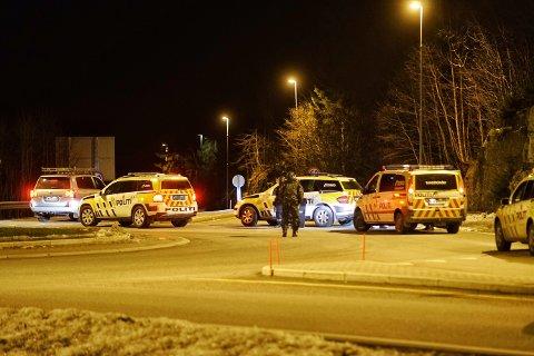 Det var et massivt oppbud med bevæpnede politipatruljer i Sande søndag ettermiddag.