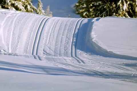 Skiløyper koster. Også i Drammen. Kommunen anslår de bruker et sted mellom fire og fem millioner kroner i året på skisporene våre.