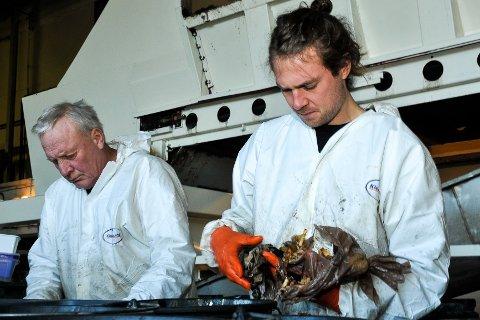 MATAVFALL: Tom Grønlie (t.v.) og Trym Westbye Syversen undersøkte søppelet vårt på oppdrag for Renovasjonsselskapet for Drammensregionen i november. Nå er resultatet klart.