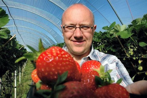 Jordbærbonde Simen Andreas Myhrene forteller at viruset er funnet på noen av hans planter i Grimstad.