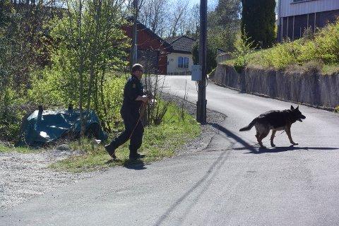 SØKER MED HUNDER: Politiet søker med hunder i området mellom Åskollen bo- og servicesenter og Svelvikveien.