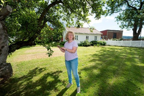 STOR HAGE: Inger Garås har mange gamle epletrær i hagen.