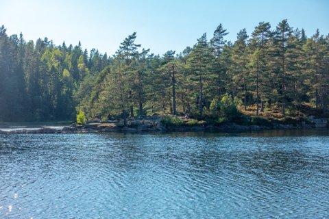 Drammen har fått et nytt naturreservat i området rundt vannet Trestikle i Røysjømarka.